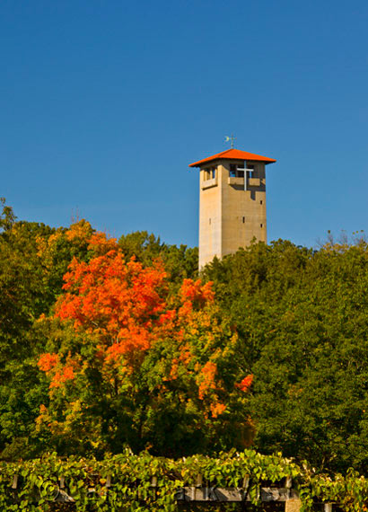 Judson Tower -  In Fall Color